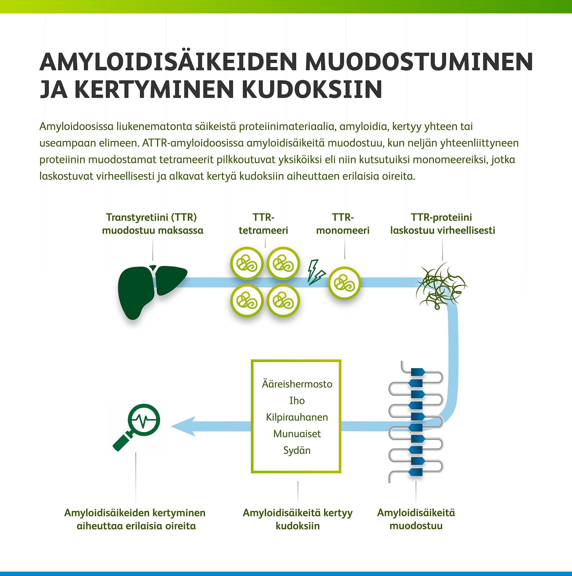 Amyloidoosi